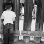 [COMUNICADO] Urgimos al Congreso de la Unión realizar una adecuada distribución de recursos en el Presupuesto 2020 a favor de la no detención de niñez y adolescencia migrante: GTPM